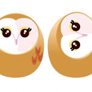 めんふくろう・メンフクロウ・Barn Owl