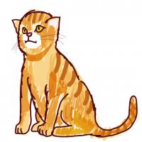ねこ・猫・ネコ・CATリアルイラスト