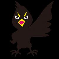 カラス 鴉 crow