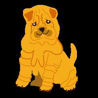 シャーペイ Sharpei  中国の犬
