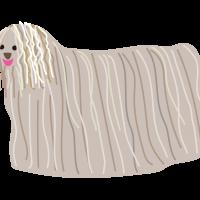 コモンドール・ハンガリアンシープドッグ・sheepdog ・Komondor・Hungarian Sheepdog