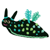 ウミウシ・アメフラシ・Nembrotha Cristata ・nudibranch・sea slug