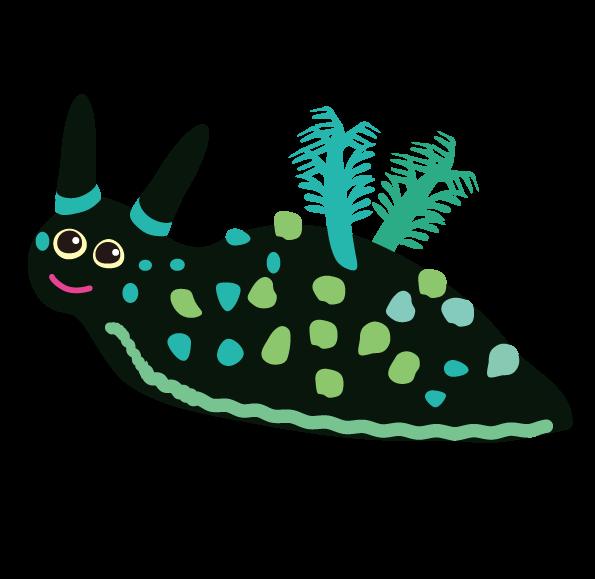 ウミウシ・アメフラシ・Nembrotha Cristata ・nudibranch・sea slug