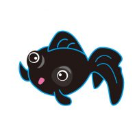 かわいい黒出目金 Black pop-eyed goldfish