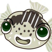 かわいいふぐ 河豚 ハリセンボン FUGU