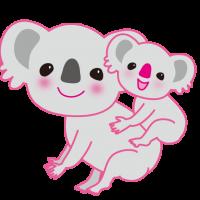 かわいい親子のコアラ|Cute parent and child koala