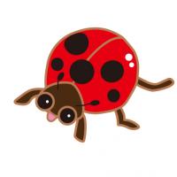 かわいいてんとう虫|Cute Ladybug
