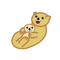 かわいい親子のラッコCute parent and child sea otter