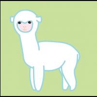 めっかわアルパカ|Very cute alpaca